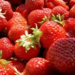 Jetzt in Saison: Gemüse & Obst im Mai