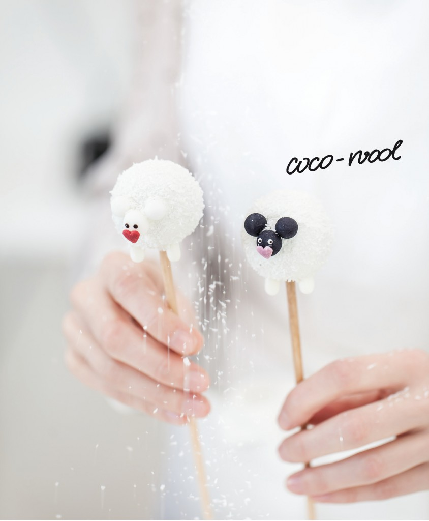 cake pop bakery coco cool