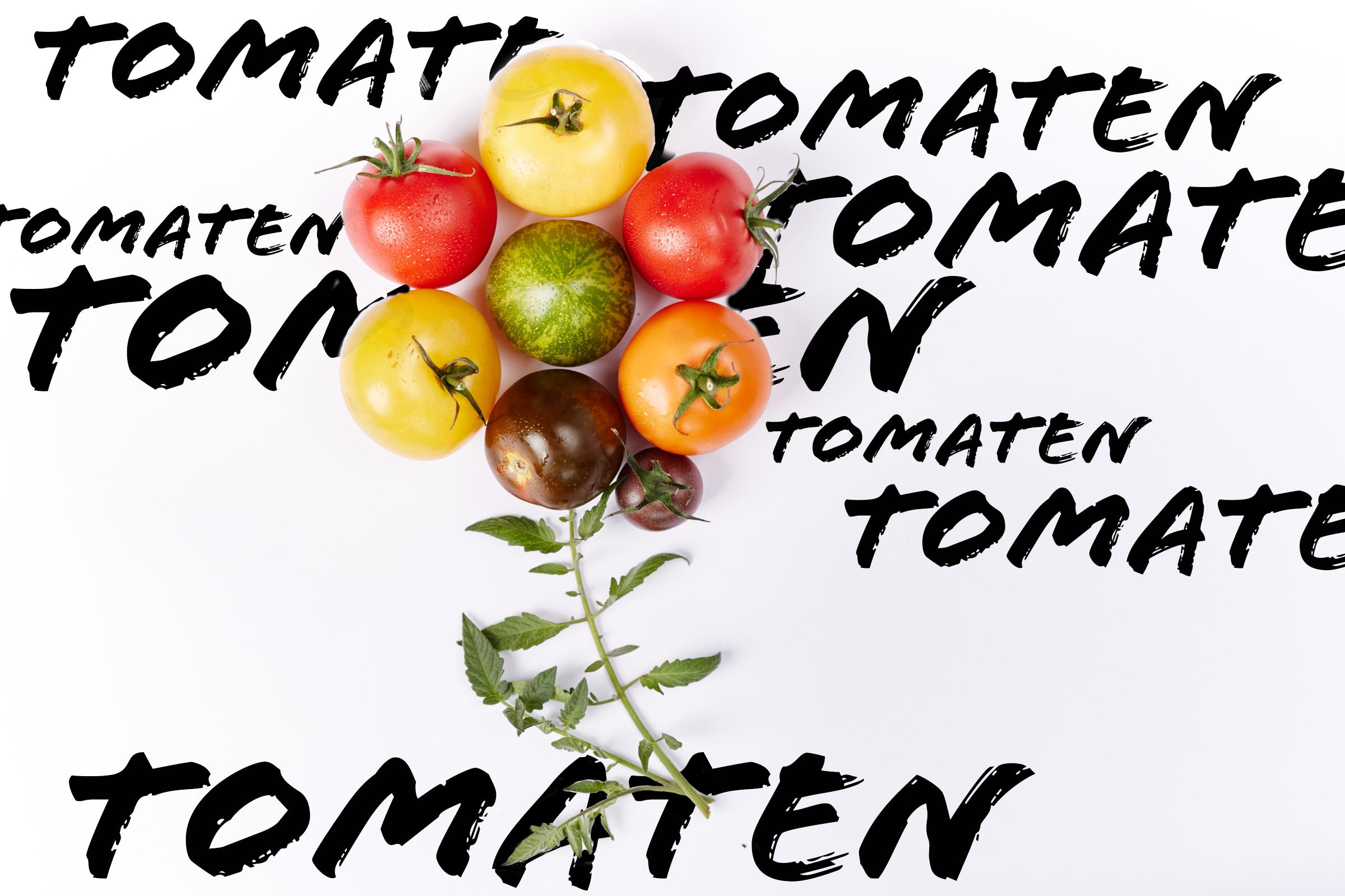 Tomaten-2