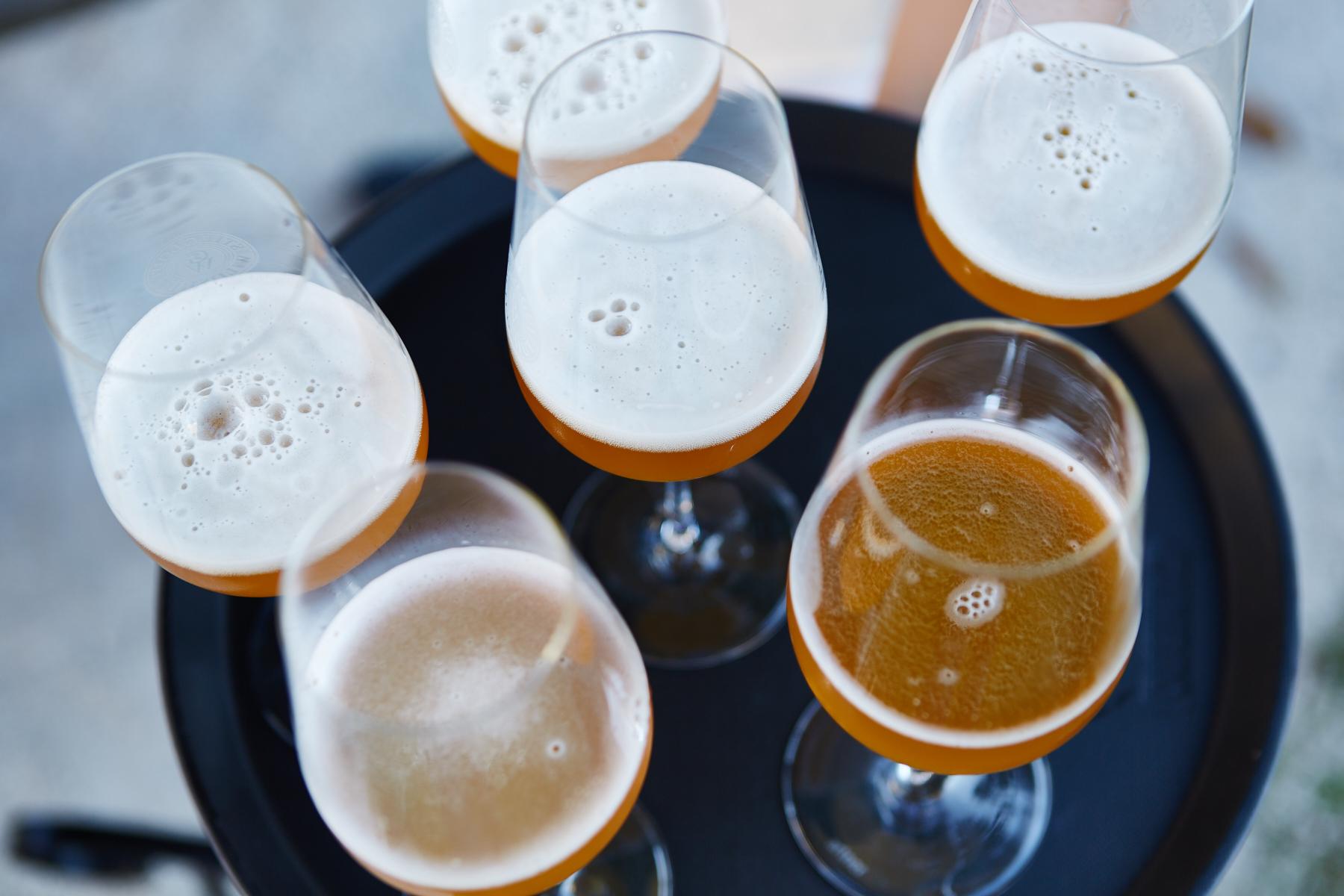 Auf Entdeckungsreise durch die Welt der Biere