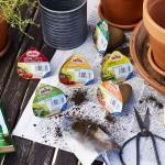 Endlich Frühling! Gemüse auf der Terrasse ansetzen