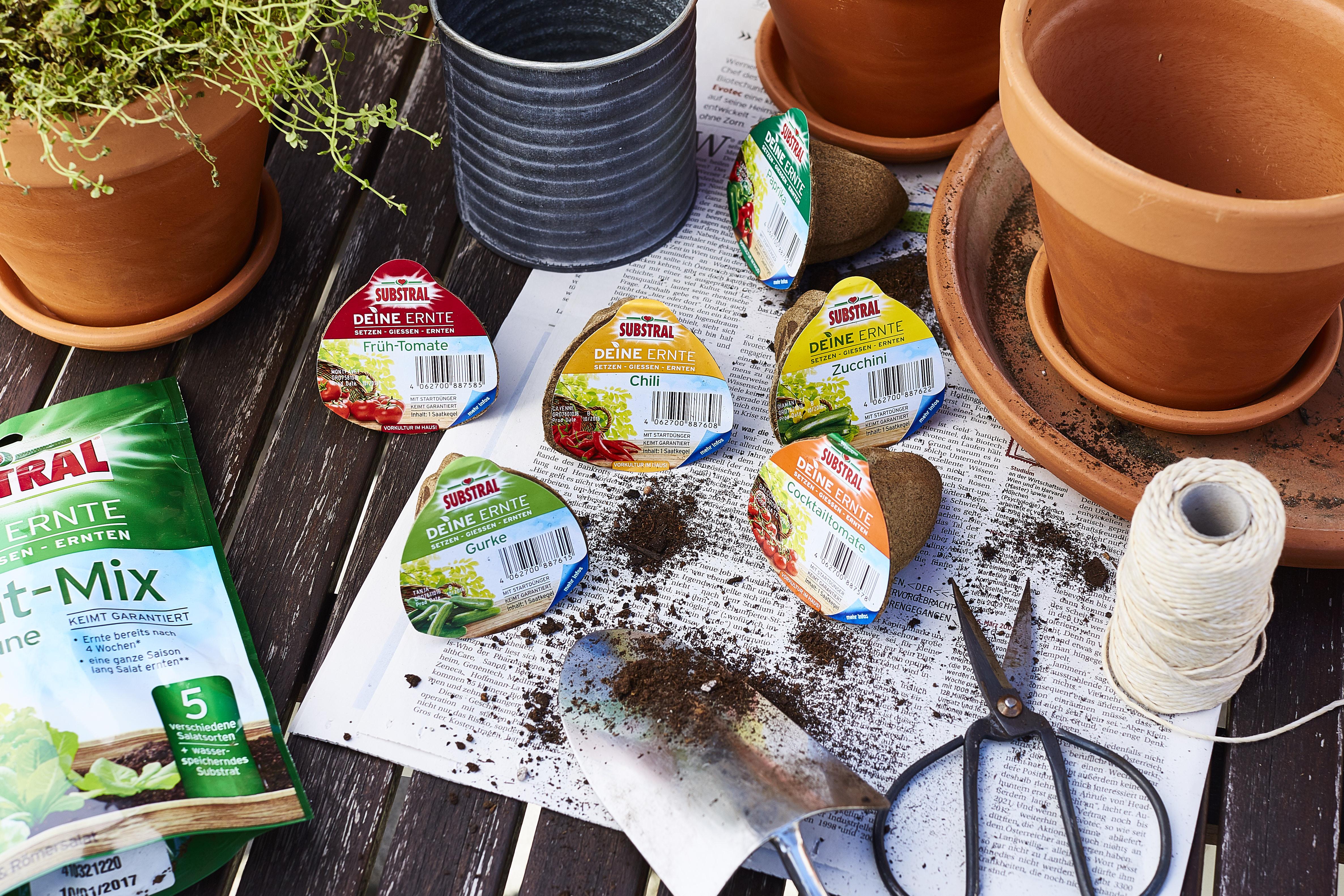 DeineErnte-substral-am balkon terasse anpflanzen-