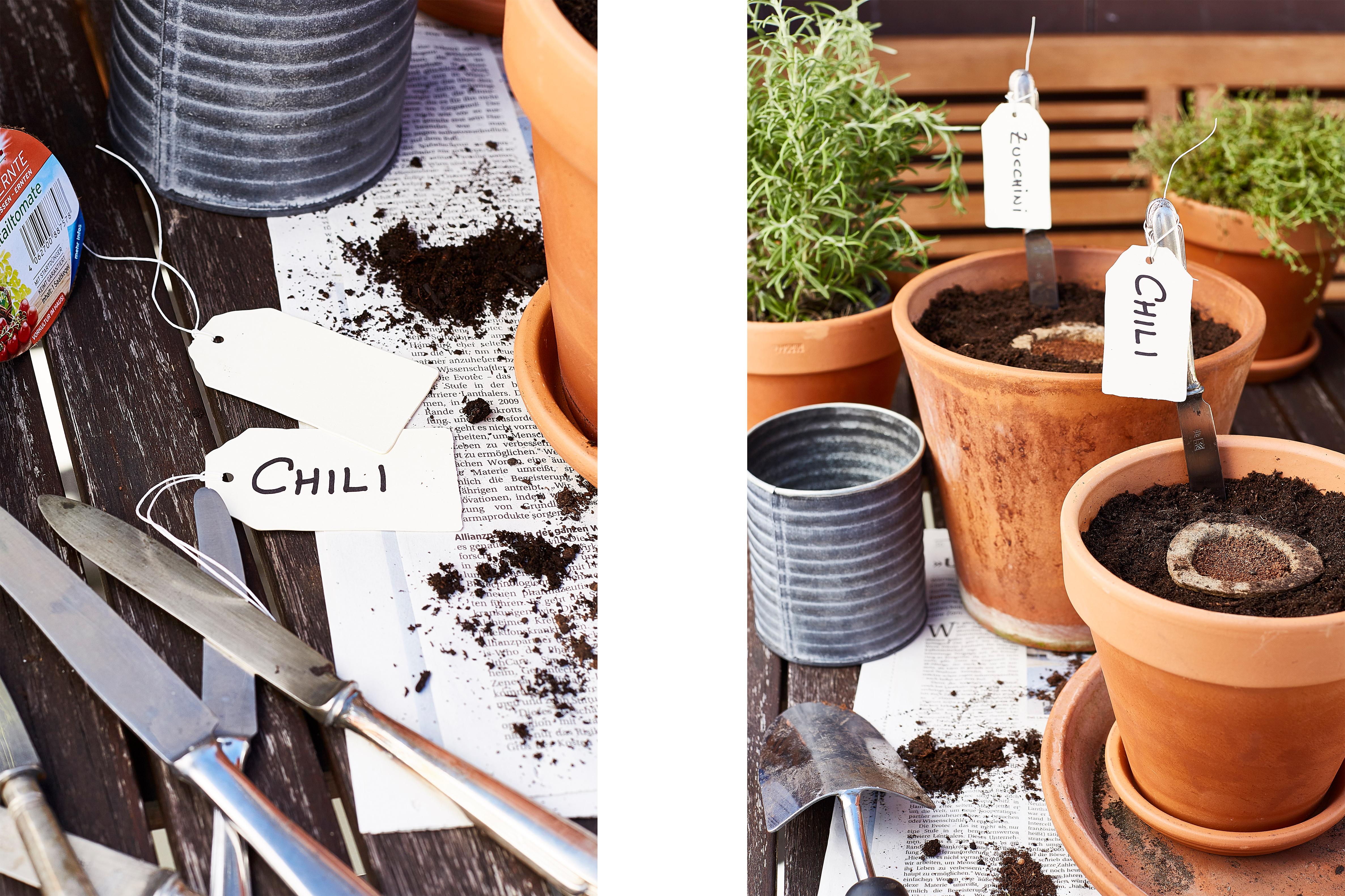 DeineErnte-substral-am-balkon-terasse-anpflanzen--1