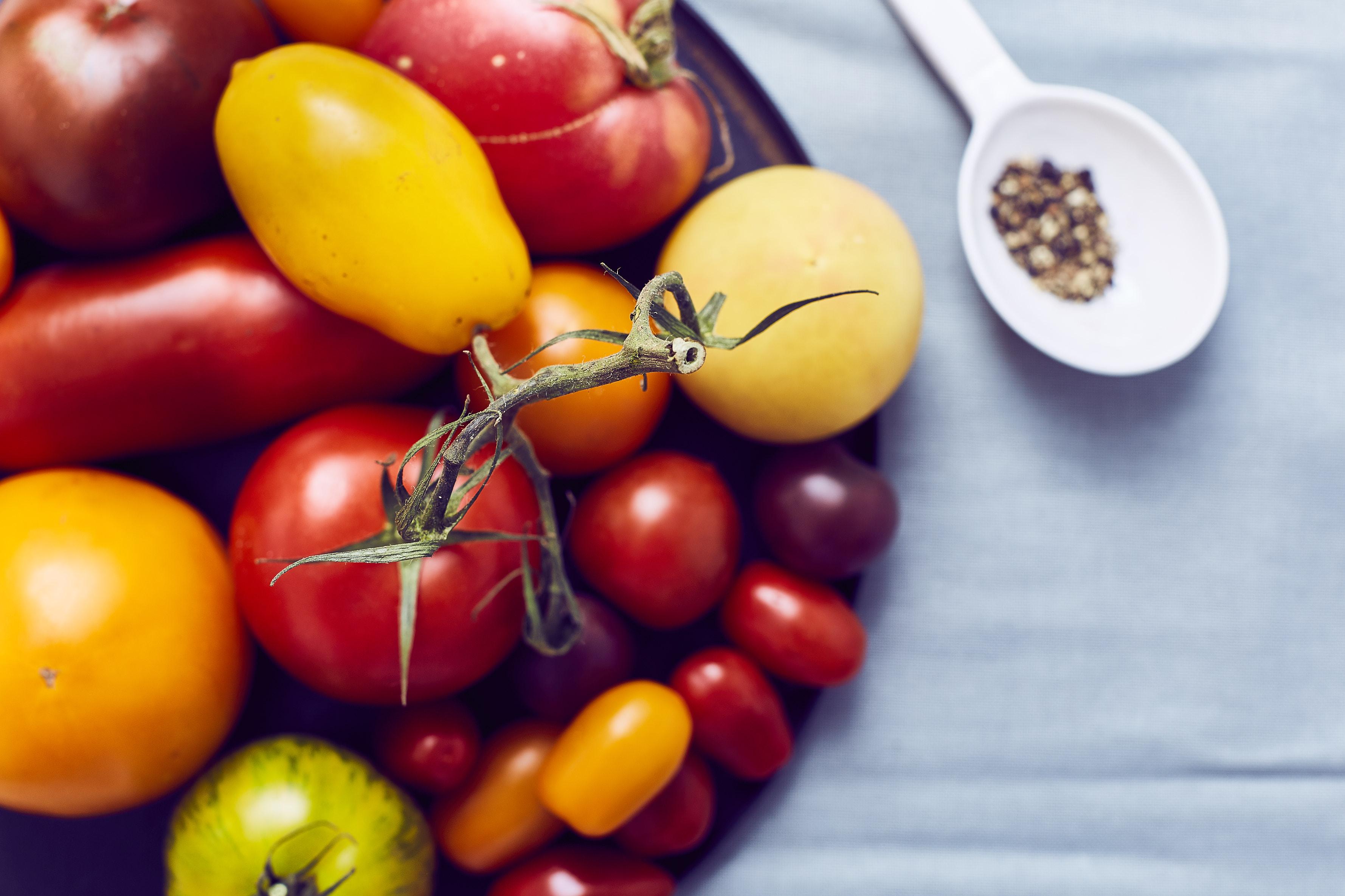 Tomato-tonnato- 4