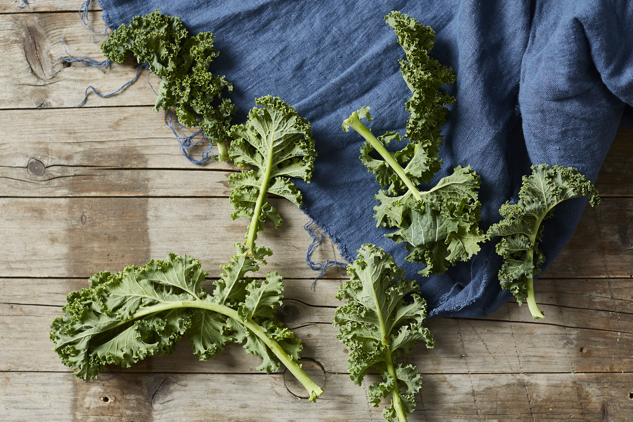brokkoli-kale-pasta- 4